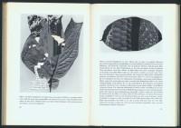 http://huberhuber.com/files/gimgs/th-201_201_das-wunder-der-pflanzeseiten-4-hp_v2.jpg