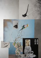 http://huberhuber.com/files/gimgs/th-225_225_nature-morte2013naturehuberhuberkaefer-.jpg