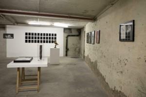 http://huberhuber.com/files/gimgs/th-231_231_144ausstellungsansicht-ich-tier-du-mensch3.jpg