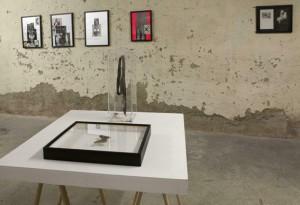 http://huberhuber.com/files/gimgs/th-231_231_144ausstellungsansicht-ich-tier-du-mensch6.jpg