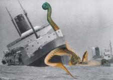 http://huberhuber.com/files/gimgs/th-235_235_architeuthis-monachus2huberhuber.jpg