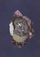 http://huberhuber.com/files/gimgs/th-241_241_huberhuberumkristallisationflipflopvioleta3.jpg