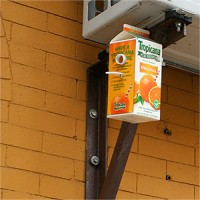 http://huberhuber.com/files/gimgs/th-57_57_20061228homelessbirdhouse.jpg